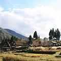 Photos: 五箇山 相倉 合掌造り(4)