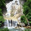 姥ヶ滝(4) 白山スーパー林道