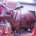 Photos: HDR 蔵造の町並み 発砲スチロールのカバ・・20120624