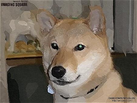 子犬時代(ガッシュ)