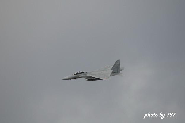 岐阜基地航空祭2008_011L