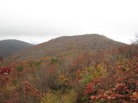 牛曳山から望む伊良谷山