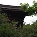 写真: 海蔵寺 01