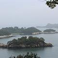 Photos: 24.6.4「偉観」多聞山